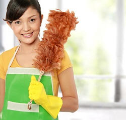 crystal palace domestic cleaning agency